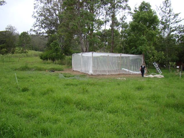 Net greenhouse
