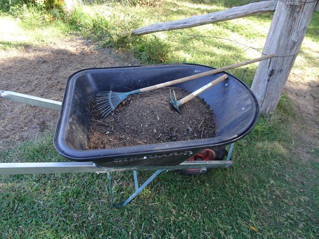 Mulch in the wheelbarrow
